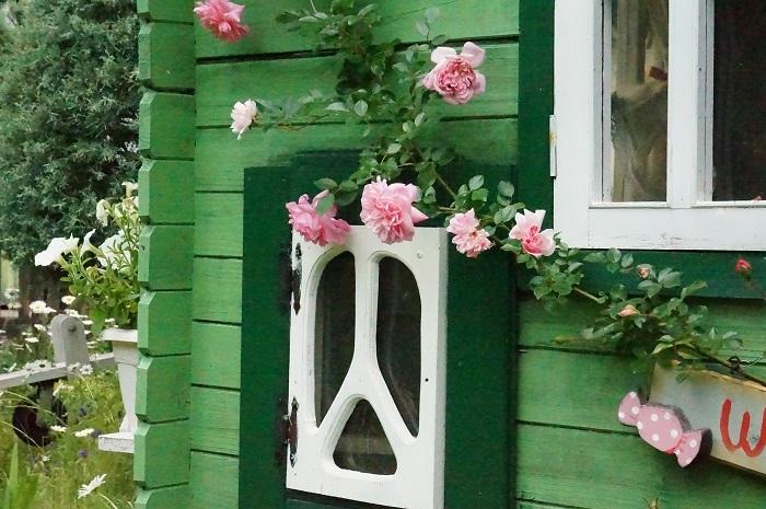 今年の薔薇は、、_e0365880_21355775.jpg