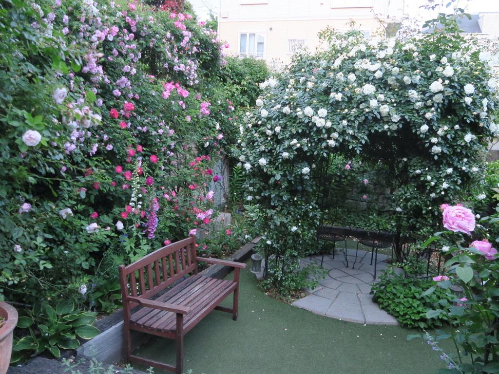 恋子の庭がテレビに!「田中哲司のこの庭きゅんです」_d0049381_04500140.jpeg