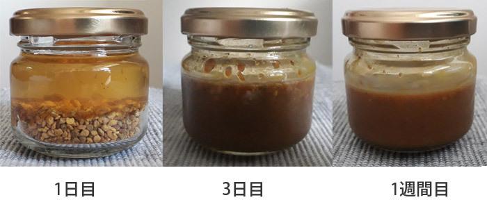 ビーポーレンとはちみつの練り合わせ_f0213401_14125804.jpg