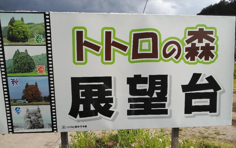 米沢めぐり・・・「トトロの森」編_a0144626_05553299.jpg