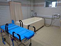 特殊浴槽リニューアル_e0143145_17353515.jpg
