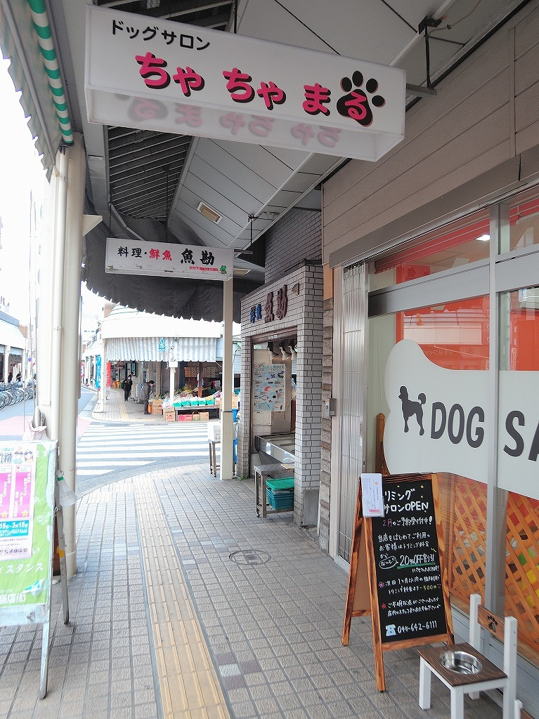 ある風景:Shirahata, Oguchi@Yokohama #4_d0393923_23011086.jpg