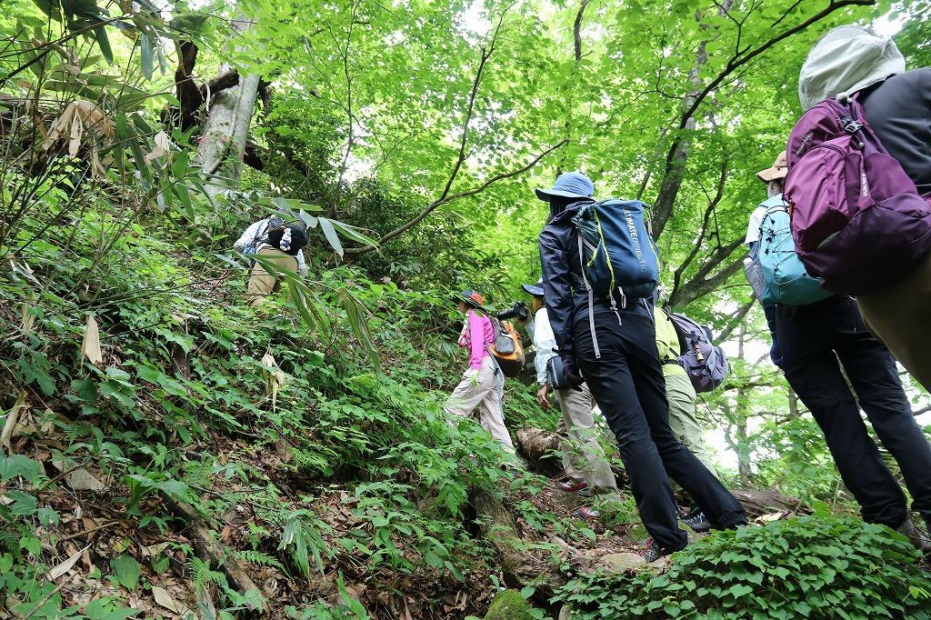 初めて 材木坂 を登りました。_a0185545_20593177.jpg