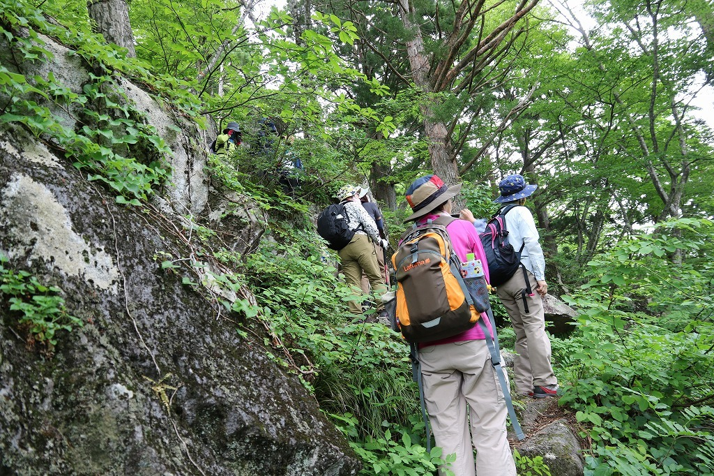 初めて 材木坂 を登りました。_a0185545_20595669.jpg
