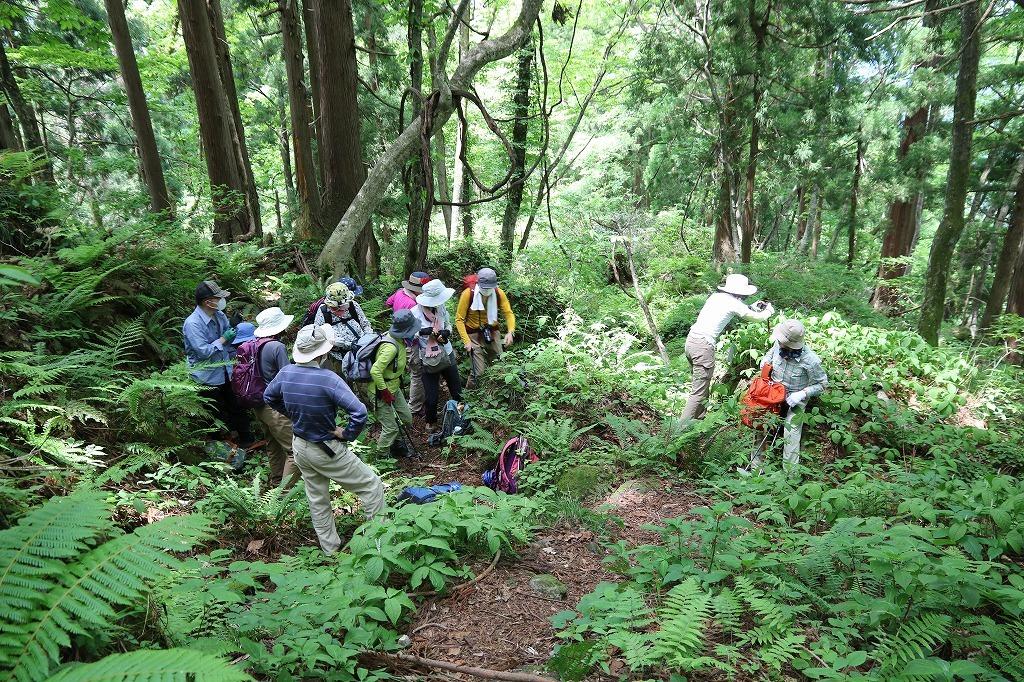 初めて 材木坂 を登りました。_a0185545_21002676.jpg