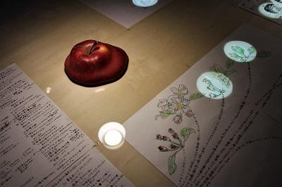 弘前れんが倉庫美術館 展覧会/春夏プログラム「りんご宇宙」_d0131668_11184804.jpg