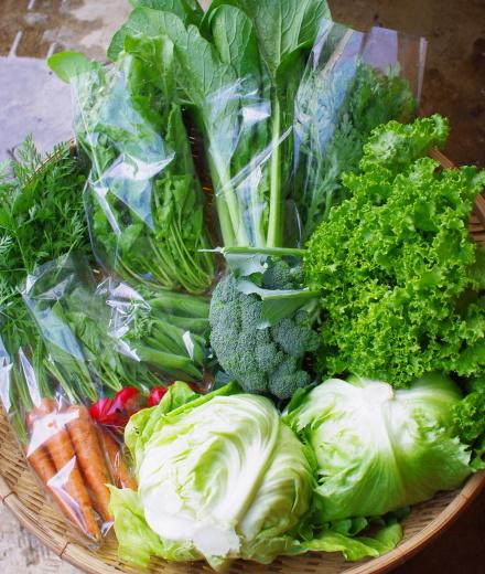 今週の野菜セット(6/8~6/12着)_c0110869_12511006.jpg