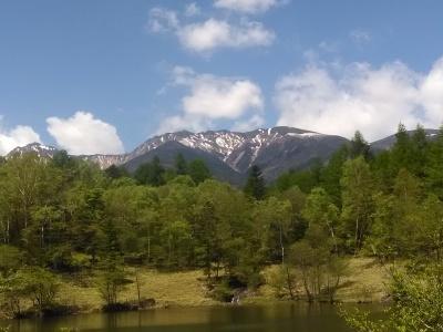 八ヶ岳2021(2) 自然郷うろうろ_c0221299_10490534.jpg
