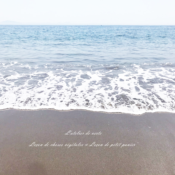 海へ。_b0365901_14290063.jpg