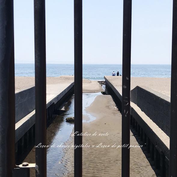 海へ。_b0365901_14314155.jpg