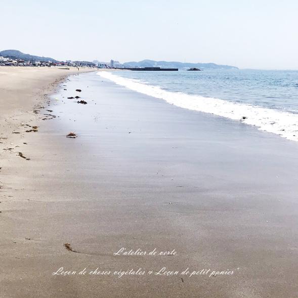 海へ。_b0365901_14315955.jpg