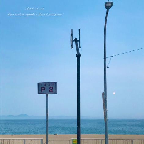 海へ。_b0365901_14321610.jpg