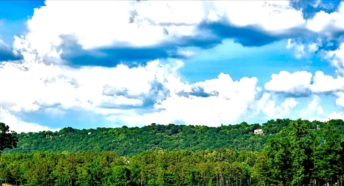 6月9日 「ドナルドダック誕生日」・「行雲流水」・「雲水」_b0255824_20400240.jpg