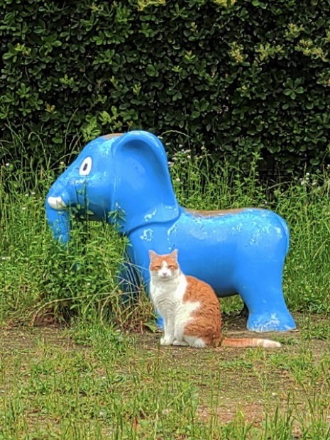 象の像の前で。_f0097528_21355073.jpg