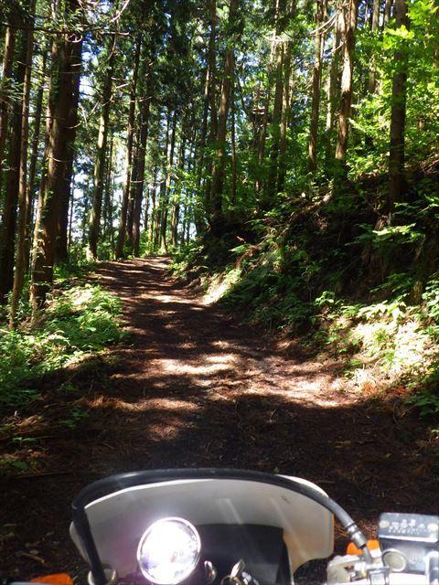 北へ向かって山道を走る_b0080681_18174040.jpg