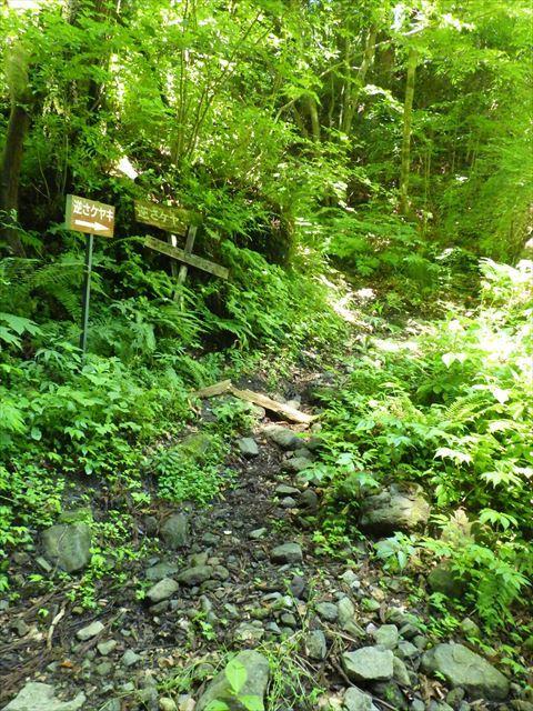 北へ向かって山道を走る_b0080681_18192509.jpg