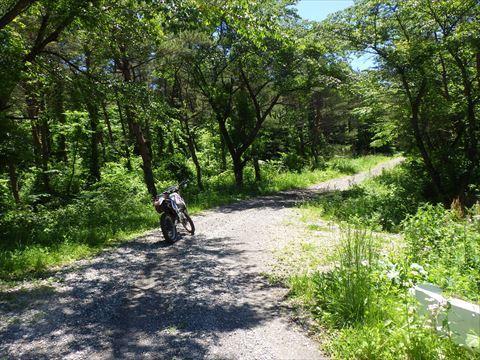 北へ向かって山道を走る_b0080681_18205780.jpg