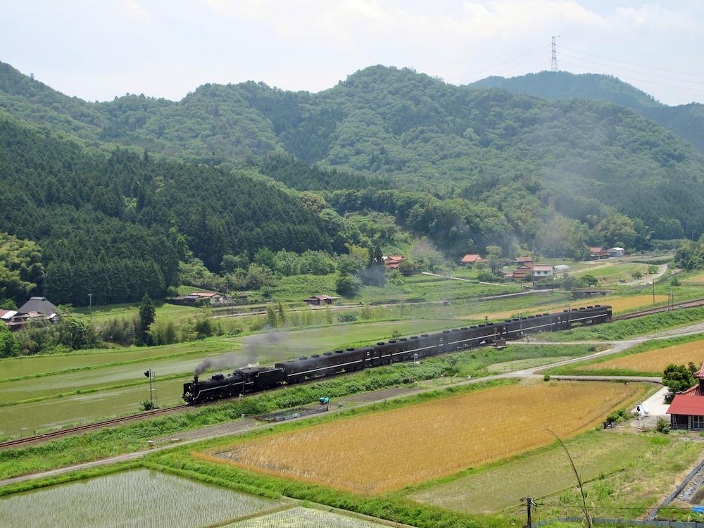 篠目駅近くで(2011年6月)_e0414296_17562731.jpg