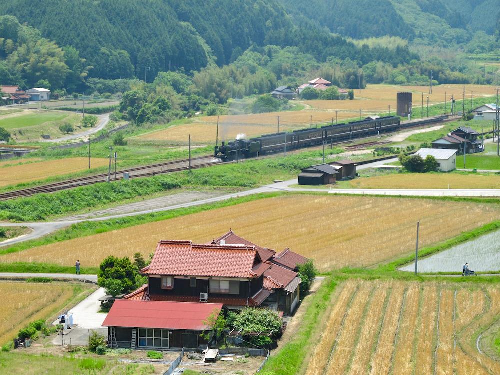 篠目駅近くで(2011年6月)_e0414296_17563175.jpg
