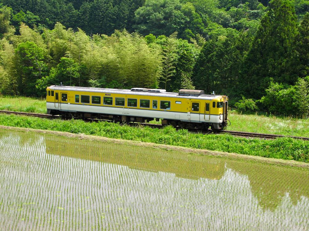 篠目駅近くで(2011年6月)_e0414296_17564290.jpg