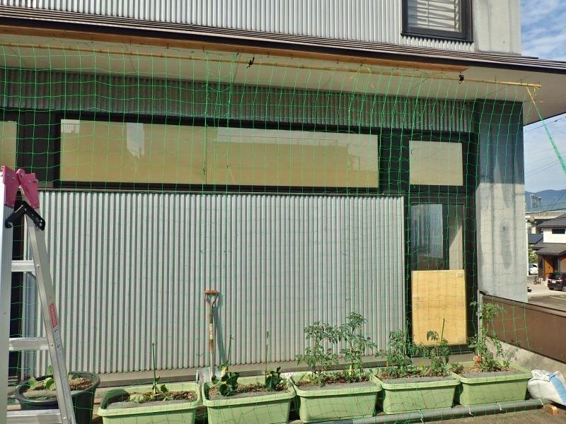 日曜日、会館の「屋上菜園」にネットを掛けました_c0336902_21391490.jpg