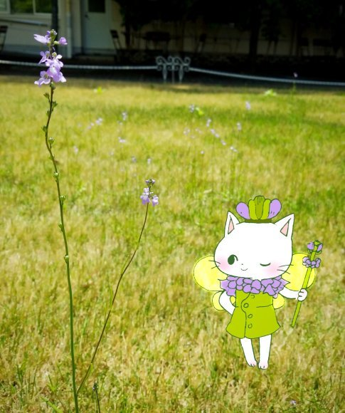 Twitter写真絵日記まとめ⑩_a0201203_16011641.jpg