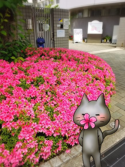 Twitter写真絵日記まとめ⑩_a0201203_16015327.jpg