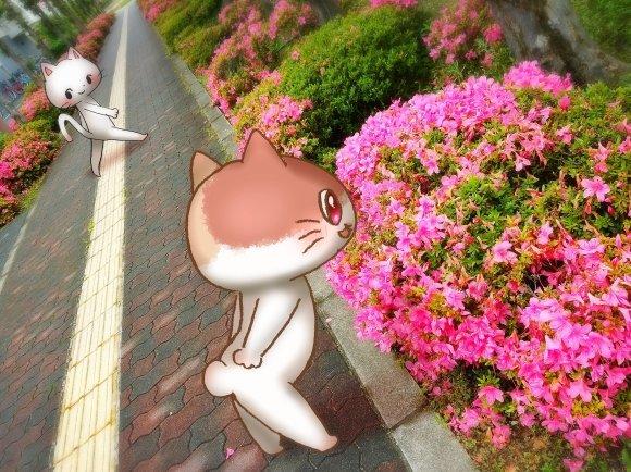 Twitter写真絵日記まとめ⑩_a0201203_16015809.jpg