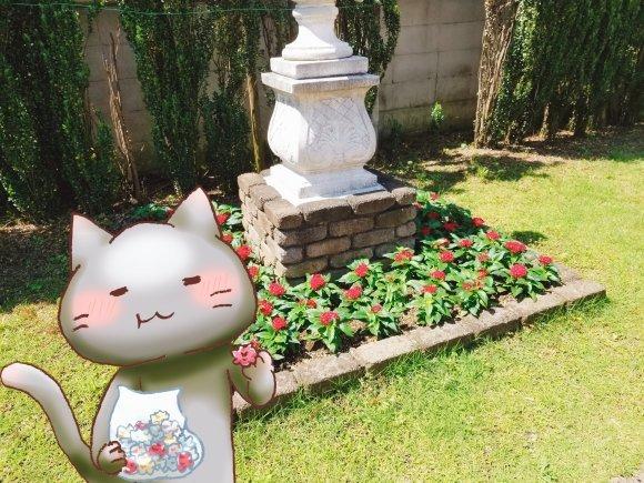 Twitter写真絵日記まとめ⑩_a0201203_16023395.jpg