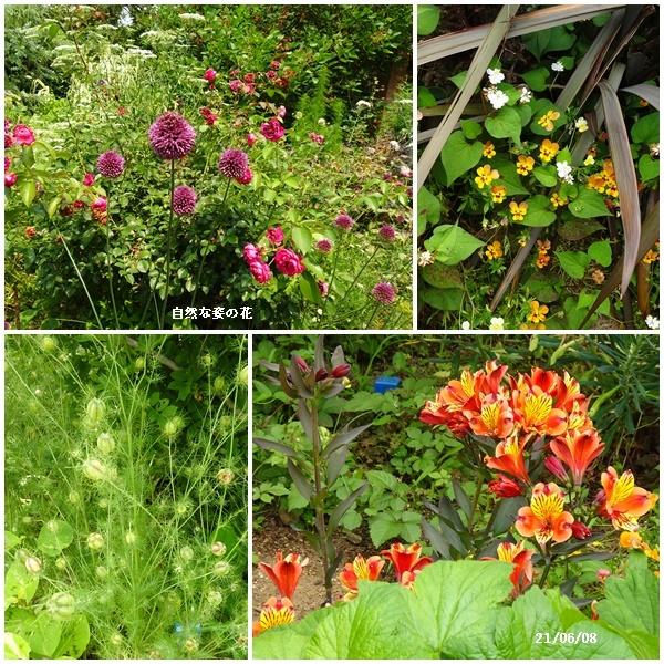 真夏のような暑い日々_c0051105_22075814.jpg