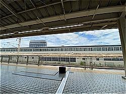総会 静岡へ_c0087349_11444197.jpg