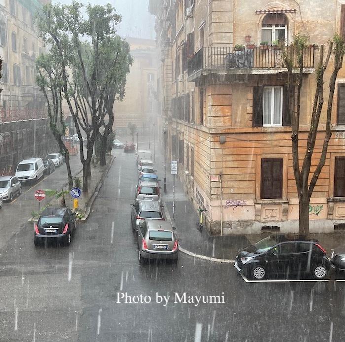 嵐のような大雨。_c0206352_05333053.jpeg