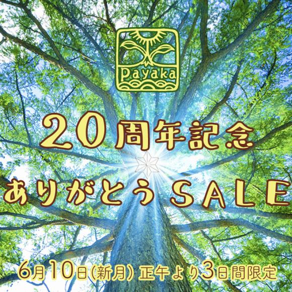 Payaka20周年ありがとうSALE_a0252768_13532512.jpg