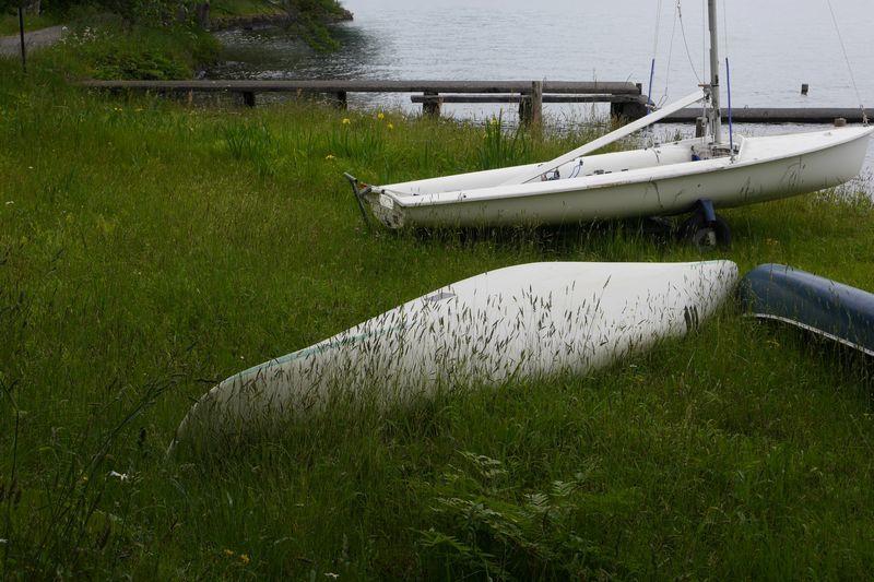 夏を待つ湖岸_b0150077_11444936.jpg
