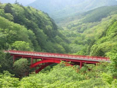 八ヶ岳2021(4) 小さな店:後編_c0221299_15051928.jpg