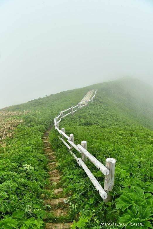 霧の中の桃岩コース_e0120026_08475752.jpg