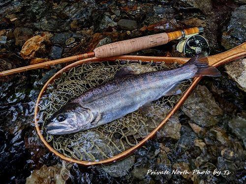 昨日の釣り_d0261148_12553552.jpg