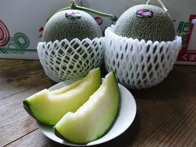 熊本産高級マスクメロン『肥後グリーン』はこれからが旬!2つの食感が楽しめお中元にも大人気! _a0254656_17242785.jpg