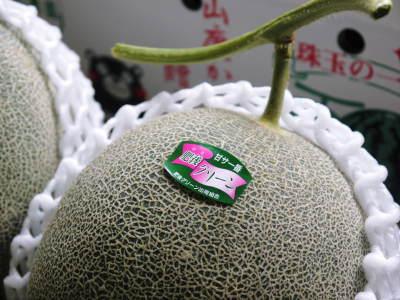 熊本産高級マスクメロン『肥後グリーン』はこれからが旬!2つの食感が楽しめお中元にも大人気! _a0254656_17252318.jpg