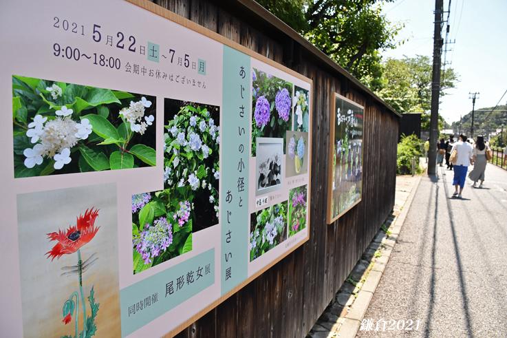 ホットニュース 『そうだ 鎌倉、行こう 2021』_d0251161_17113102.jpg