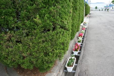 春季環境美化コンクールの審査が行われました‼_f0141477_08501170.jpg