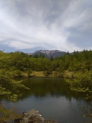 八ヶ岳2021 (5)自然郷の外あれこれ_c0221299_16522048.jpg