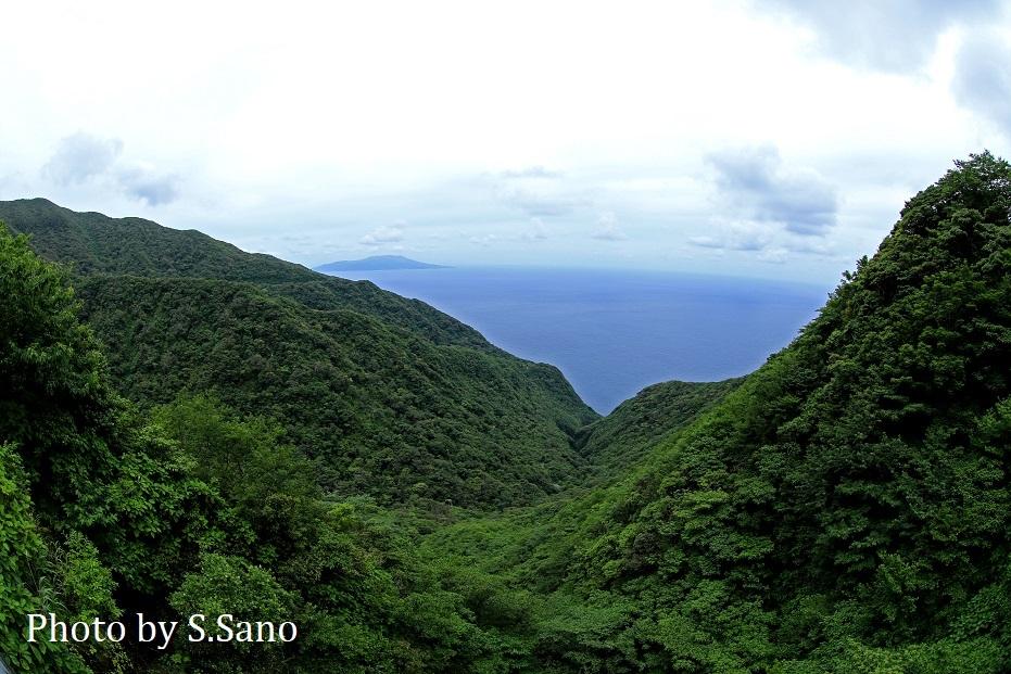 御蔵島の旅_b0348205_22301465.jpg