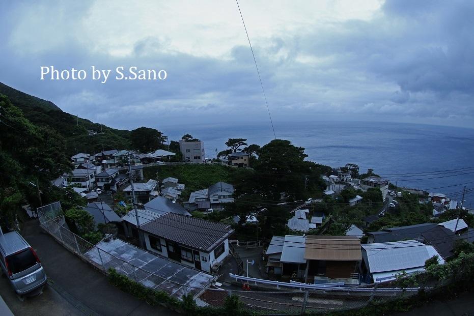 御蔵島の旅_b0348205_22350910.jpg