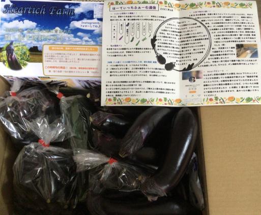 旬の夏秋茄子の味わいとおとめ桑茶の味わい_a0053063_21010664.jpeg