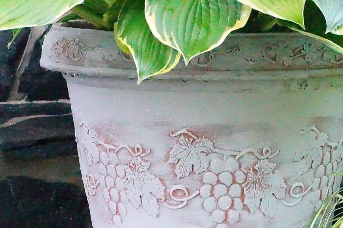 土の鉢か、樹脂の鉢か_e0365880_19145567.jpg