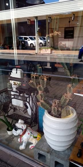 Kaban Street!_a0292294_10343917.jpg