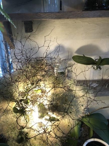 栗山さんの堆肥販売終了のお知らせ_c0102228_11201266.jpeg
