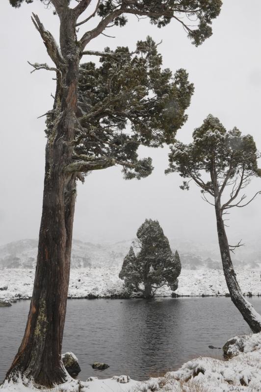 静かな冬 タスマニア_f0050534_09221857.jpg