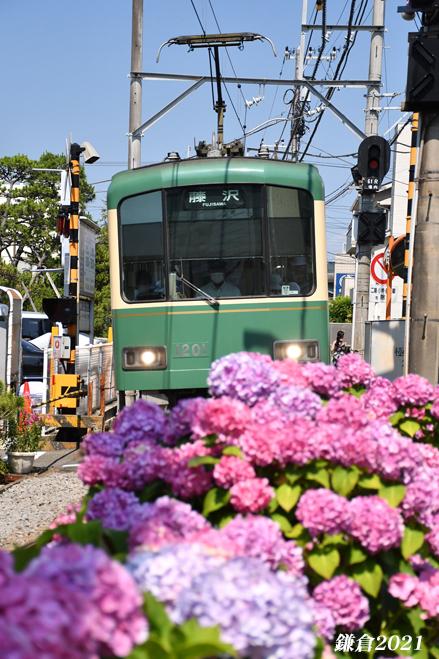 お気に入りのスポットが‥‥『そうだ 鎌倉、行こう 2021』_d0251161_08520239.jpg